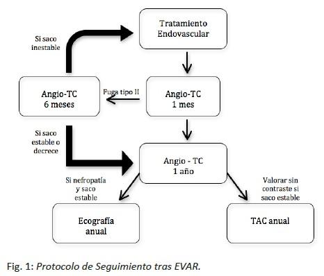 procedimiento-evar